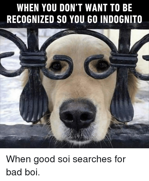 Bad, Dank, and Good: WHEN YOU DON'T WANT TO BE  RECOGNIZED SO YOU GO INDOGNITO When good soi searches for bad boi.
