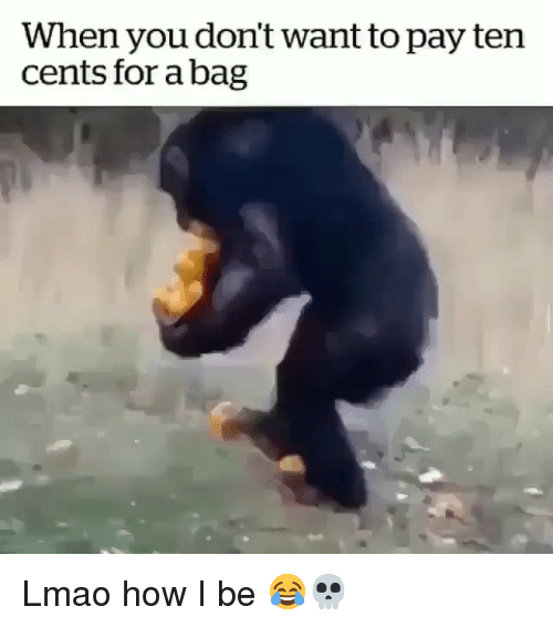 Funny, Lmao, and How: When you don't want to pay ten  cents for abag Lmao how I be 😂💀