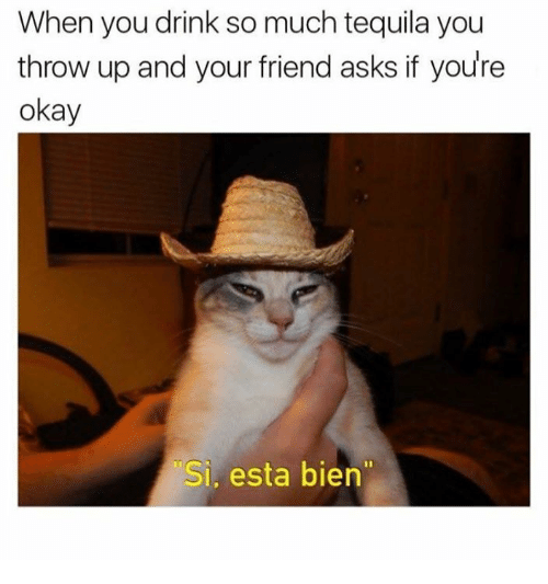 """Throwes: When you drink so much tequila you  throw up and your friend asks if you're  okay  Si esta bien"""""""