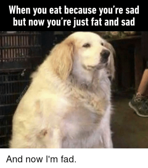 Just Fat: When you eat because you re sad  but now you're just fat and sad And now I'm fad.