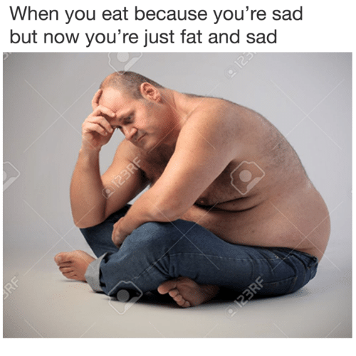 Just Fat: When you eat because you're sad  but now you're just fat and sad