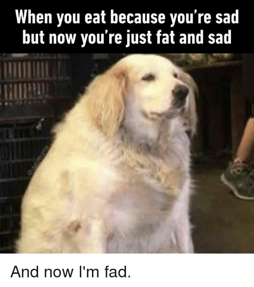 Just Fat: When you eat because you're sad  but now you're just fat and sad And now I'm fad.