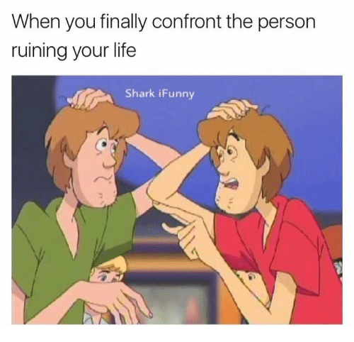 Confrontable: When you finally confront the person  ruining your life  Shark iFunny