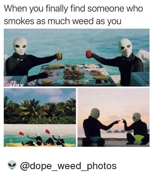 Dope, Memes, and Weed: When you finally find someone who  smokes as much weed as you  ITS 👽 @dope_weed_photos