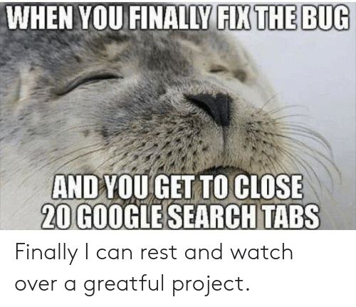 Greatful: WHEN YOU FINALLY FIX THE BUG  ANDYOU GET TO CLOSE  20 GOOGLE SEARCH TABS Finally I can rest and watch over a greatful project.