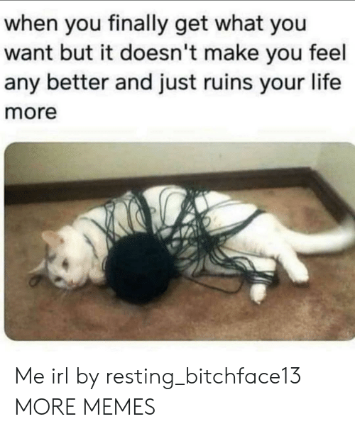 what you want: when you finally get what you  want but it doesn't make you feel  any better and just ruins your life  more Me irl by resting_bitchface13 MORE MEMES