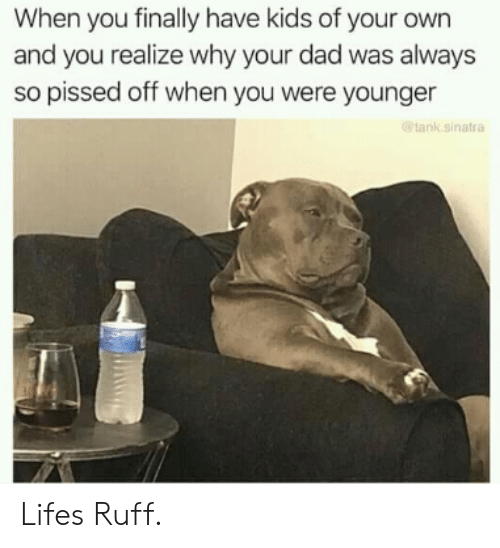 So Pissed Off: When you finally have kids of your own  and you realize why your dad was always  so pissed off when you were younger  ank sinatra Lifes Ruff.