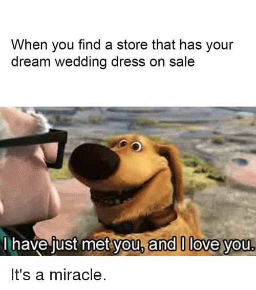 Memes Miracles And When You Find A Store That Has Your Dream