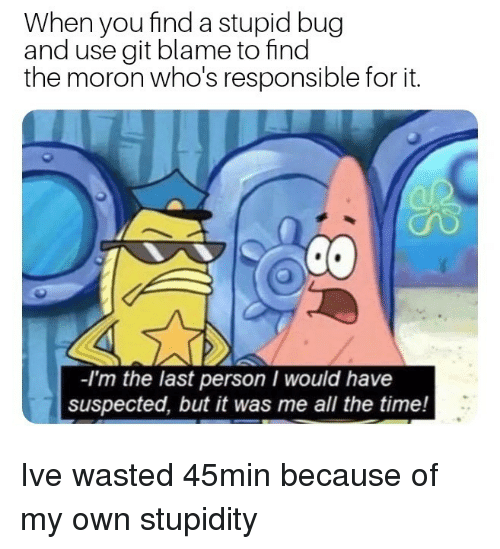Time, Stupidity, and All The: When you find a stupid bug  and use git blame to find  the moron who's responsible for it.  -I'm the last person I would have  suspected, but it was me all the time! Ive wasted 45min because of my own stupidity