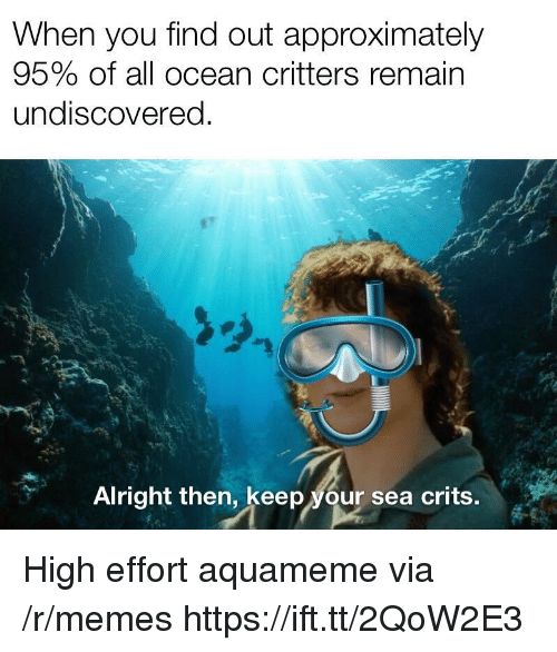 Memes, Ocean, and Alright: When you find out approximately  95% of all ocean critters remain  undiscovered  Alright then, keep your sea crits. High effort aquameme via /r/memes https://ift.tt/2QoW2E3