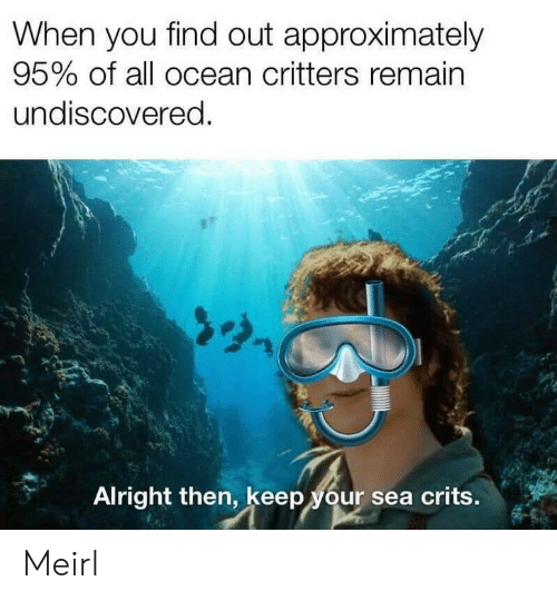 Remain: When you find out approximately  95% of all ocean critters remain  undiscovered.  Alright then, keep your sea crits. Meirl