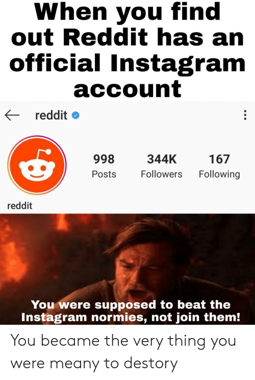 normies: When you find  out Reddit has an  official Instagram  account  reddit  998  344K  167  Following  Followers  Posts  reddit  You were supposed to beat the  Instagram normies, not join them! You became the very thing you were meany to destory