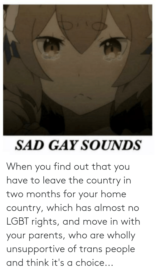 When You Find Out: When you find out that you have to leave the country in two months for your home country, which has almost no LGBT rights, and move in with your parents, who are wholly unsupportive of trans people and think it's a choice...