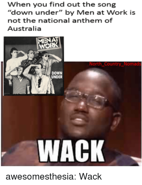 "Tumblr, National Anthem, and Work: When you find out the song  ""down under"" by Men at Work is  not the national anthem of  Australia  MIENAT  нож  North Country_Nomads  DOWN  UNDER  WACK awesomesthesia:  Wack"