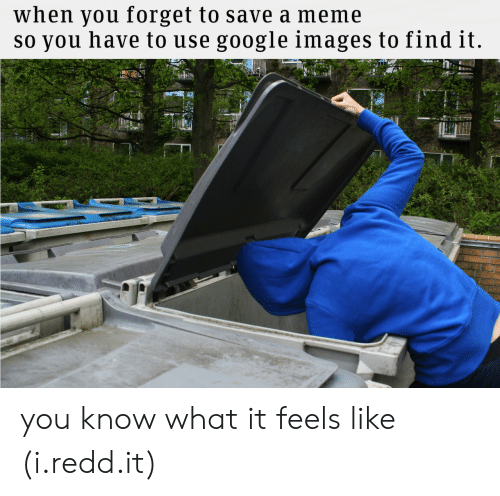 google images: when you forget to save a meme  so you have to use google images tofind it you know what it feels like (i.redd.it)
