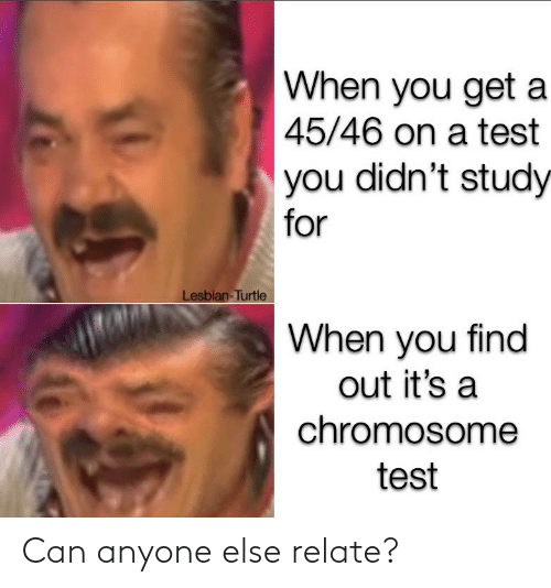 Funny, Lesbian, and Test: When you get a  45/46 on a test  you didn't study  for  Lesbian-Turtle  When you find  out it's a  chromosome  test Can anyone else relate?