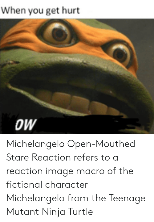 Fictional Character: When you get hurt  OW Michelangelo Open-Mouthed Stare Reaction refers to a reaction image macro of the fictional character Michelangelo from the Teenage Mutant Ninja Turtle
