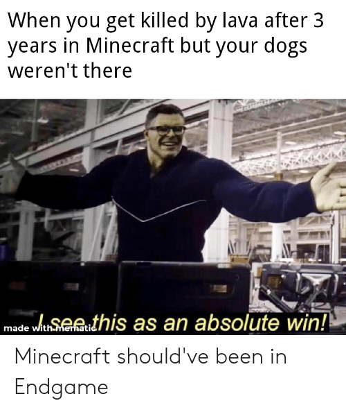 Dogs, Minecraft, and Dank Memes: When you get killed by lava after 3  years in Minecraft but your dogs  weren't there  see this as an absolute win  made with  ati Minecraft should've been in Endgame