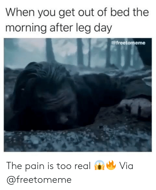 Too Real: When you get out of bed the  morning after leg day  @freetomeme The pain is too real 😱🔥 Via @freetomeme