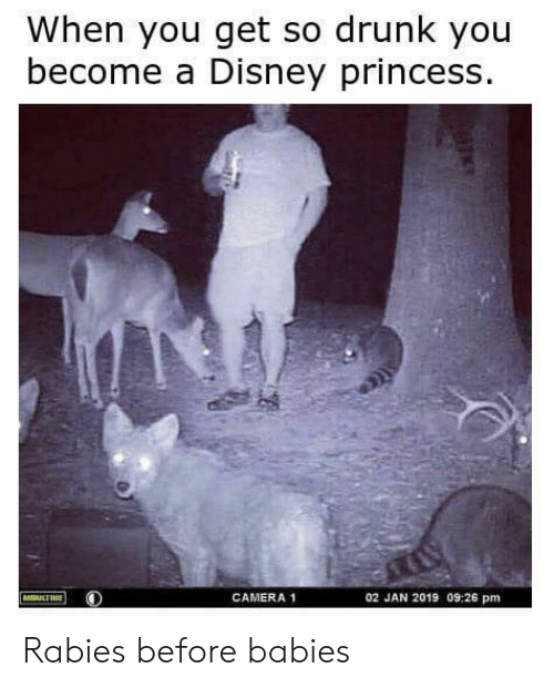 So Drunk: When you get so drunk you  become a Disney princess  CAMERA 1  02 JAN 2019 09:26 pm Rabies before babies