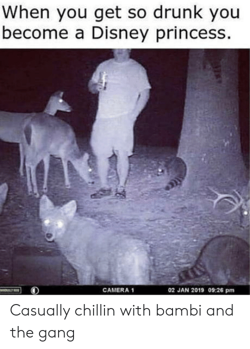 Camera: When you get so drunk you  become a Disney princess.  02 JAN 2019 09:26 pm  MOULTRE  CAMERA 1 Casually chillin with bambi and the gang