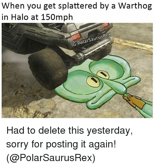 delet this: When you get splattered by a Warthog  in Halo at 150mph  IG PolarSaurusRex Had to delete this yesterday, sorry for posting it again! (@PolarSaurusRex)