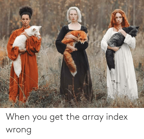 Get The: When you get the array index wrong