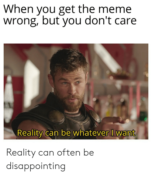 you dont care: When you get the meme  wrong, but you don't care  Reality can be whatever I want Reality can often be disappointing