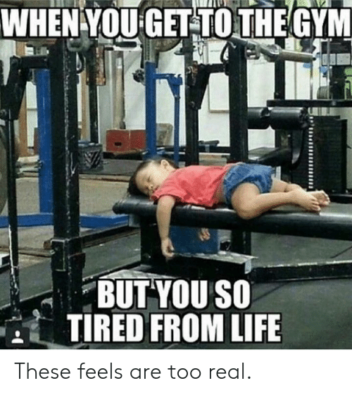 Gym, Life, and You: WHEN YOU GET TOTHE GYM  BUT YOU SO  TIRED FROM LIFE These feels are too real.