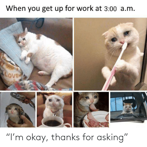 "3 00: When you get up for work at 3:00 a.m.  LOVE ""I'm okay, thanks for asking"""