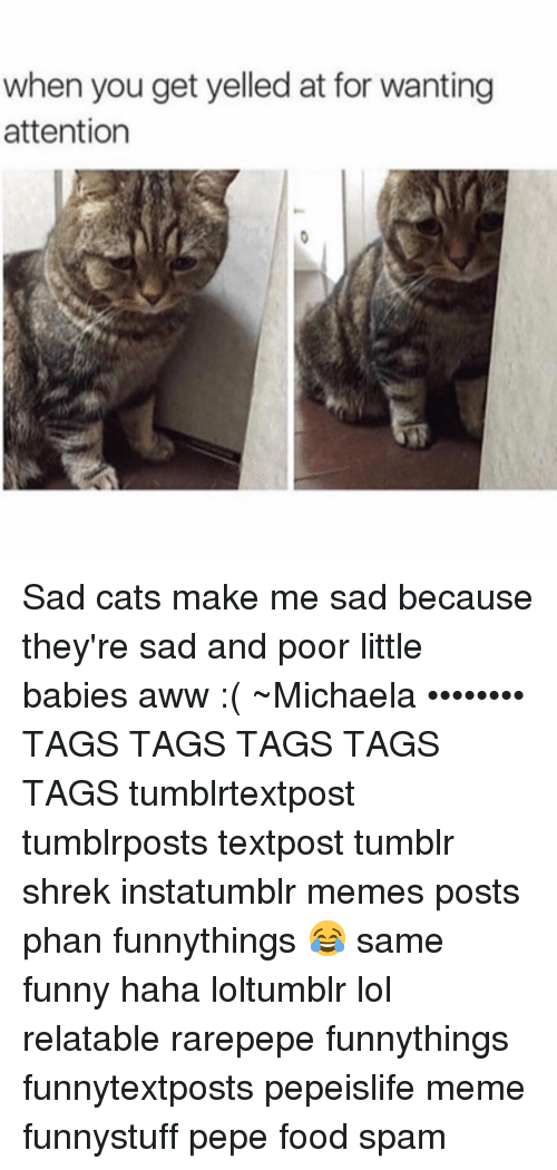 getting yelled at: when you get yelled at for wanting  attention Sad cats make me sad because they're sad and poor little babies aww :( ~Michaela •••••••• TAGS TAGS TAGS TAGS TAGS tumblrtextpost tumblrposts textpost tumblr shrek instatumblr memes posts phan funnythings 😂 same funny haha loltumblr lol relatable rarepepe funnythings funnytextposts pepeislife meme funnystuff pepe food spam