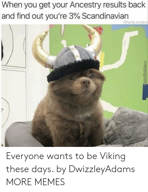 Ancestry: When you get your Ancestry results back  and find out you're 3% Scandinavian  @tank.sinatra Everyone wants to be Viking these days. by DwizzleyAdams MORE MEMES