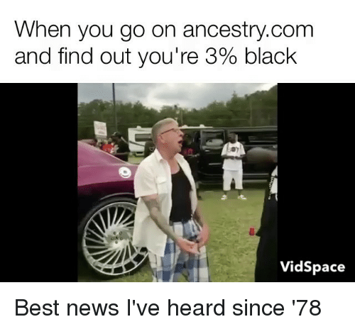 Mormon: When you go on ancestry.comm  and find out you're 390 black  VidSpace Best news I've heard since '78