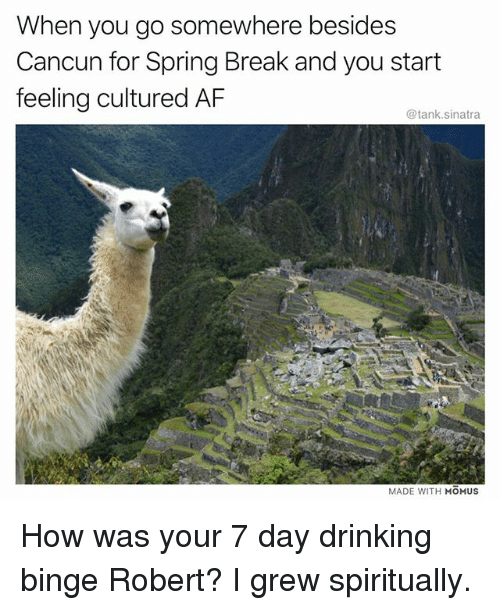 Af, Drinking, and Funny: When you go somewhere besides  Cancun for Spring Break and you start  feeling cultured AF  @tank.sinatra  MADE WITH MOMUS How was your 7 day drinking binge Robert? I grew spiritually.