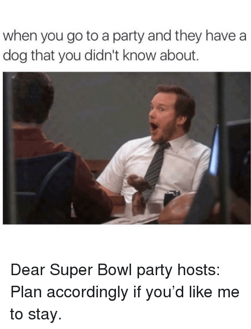 accordingly: when you go to a party and they havea  dog that you didn't know about. Dear Super Bowl party hosts: Plan accordingly if you'd like me to stay.