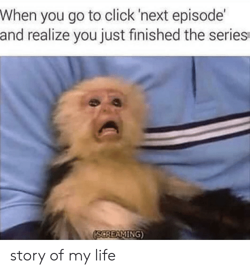 story of my life: When you go to click 'next episode  and realize you just finished the series  SCREAMING story of my life