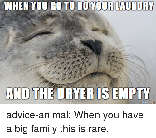 Advice, Family, and Laundry: WHEN YOU GO TO DO YOUR LAUNDRY  AND THE DRYER IS EMPTY advice-animal:  When you have a big family this is rare.