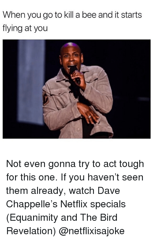 Funny, Netflix, and Dave Chappelle: When you go to kill a bee and it starts  flying at you Not even gonna try to act tough for this one. If you haven't seen them already, watch Dave Chappelle's Netflix specials (Equanimity and The Bird Revelation) @netflixisajoke
