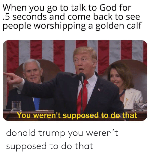 Donald Trump, God, and Trump: When you go to talk to God for  5 seconds and come back to see  people worshipping a golden calf  You weren't supposed to do that donald trump you weren't supposed to do that