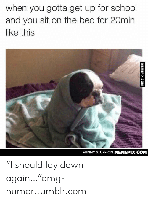 """You Sit: when you gotta get up for school  and you sit on the bed for 20min  like this  FUNNY STUFF ON MEMEPIX.COM  MEMEPIX.COM """"I should lay down again…""""omg-humor.tumblr.com"""
