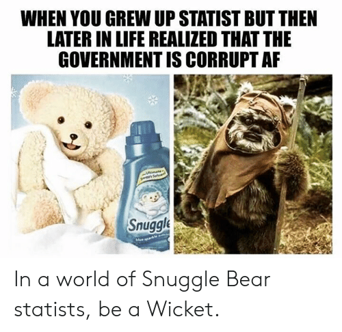 snuggle bear: WHEN YOU GREW UP STATIST BUT THEN  LATER IN LIFE REALIZED THAT THE  GOVERNMENT IS CORRUPT AF  Snuggle In a world of Snuggle Bear statists, be a Wicket.