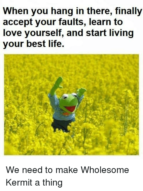 Life, Love, and Best: When you hang in there, finally  accept your faults, learn to  love yourself, and start living  your best life. We need to make Wholesome Kermit a thing