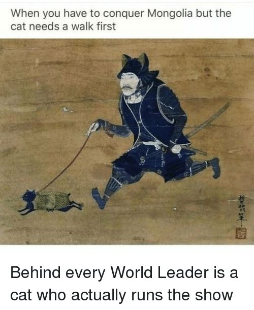 Funny, World, and Mongolia: When you have to conquer Mongolia but the  cat needs a walk first