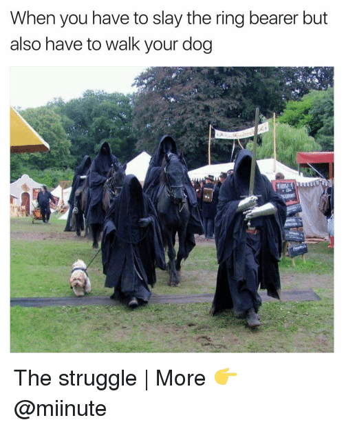 bearer: When you have to slay the ring bearer but  also have to walk your dog The struggle   More 👉 @miinute