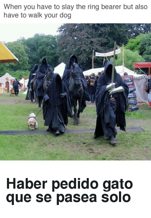 bearer: When you have to slay the ring bearer but also  have to walk your dog <h2>Haber pedido gato que se pasea solo</h2>