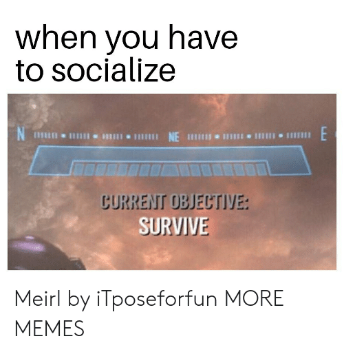 Dank, Memes, and Target: when you have  to socialize  CURRENT OBJECTIVE  SURVIVE Meirl by iTposeforfun MORE MEMES