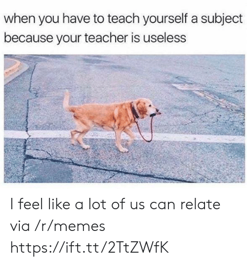 Liked A: when you have to teach yourself a subject  because your teacher is useless I feel like a lot of us can relate via /r/memes https://ift.tt/2TtZWfK