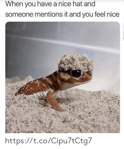hat: When you havea nice hat and  someone mentions it and you feel nice https://t.co/Cipu7tCtg7