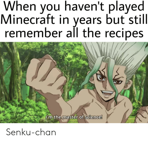 Minecraft, Recipes, and Science: When you haven't played  Minecraft in years but still  remember all the recipes  I'm the master of science! Senku-chan