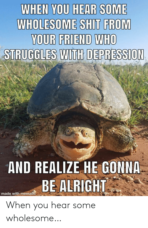 Shit, Depression, and Wholesome: WHEN YOU HEAR SOME  WHOLESOME SHIT FROM  YOUR FRIEND WHO  STRUGGLES WITH DEPRESSION  AND REALIZE HE GONNA  BE ALRIGHT  made with mematic When you hear some wholesome…